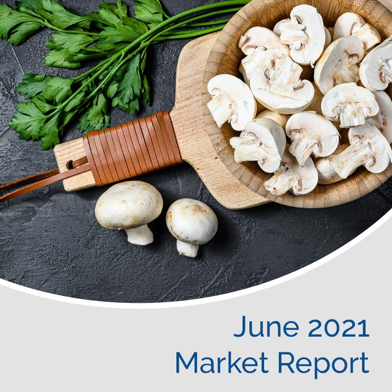 Market Report June 2021