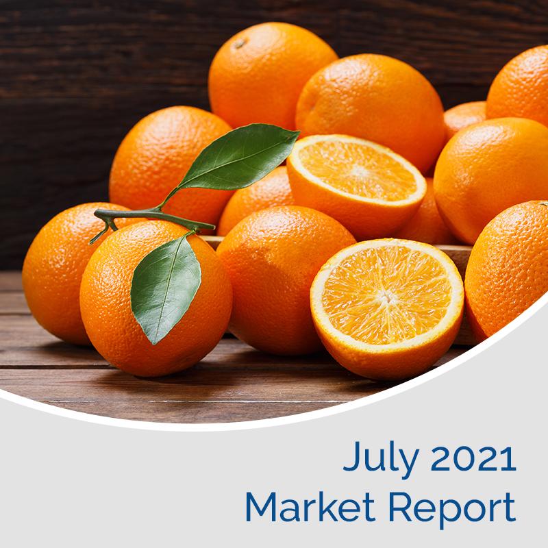 Market Report July 2021
