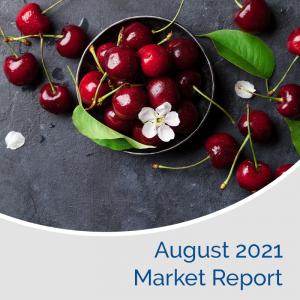 Market Report August 2021