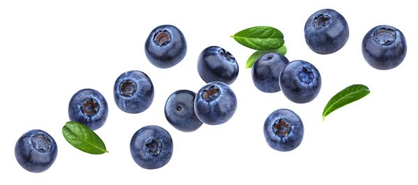 IDC Blueberries