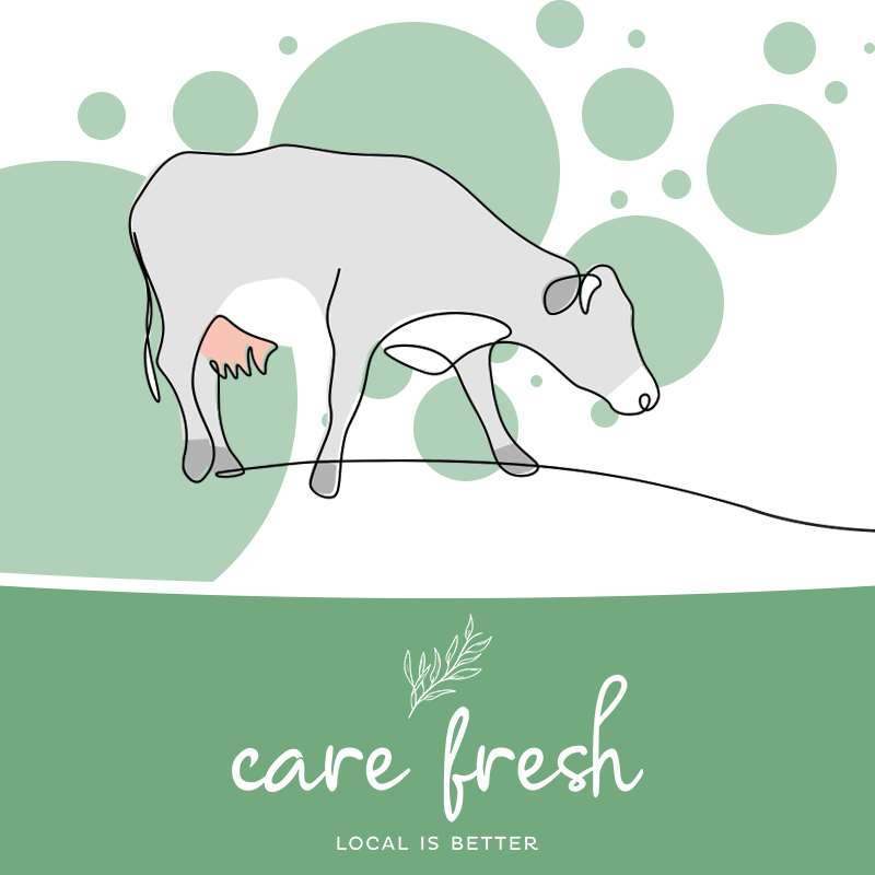 Care Fresh Service